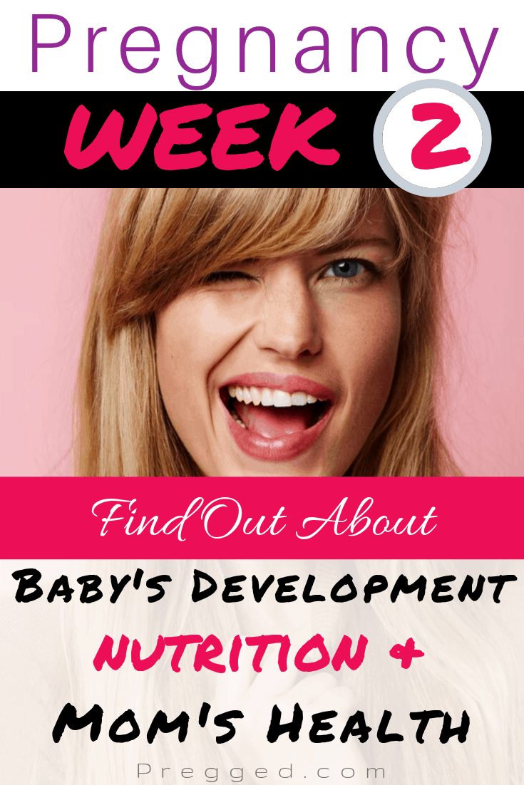 Find out everything you ever wanted to know about Week 2 of Pregnancy. Our obsterician takes you through moms health, baby's development and nutrition at this critical stage.... #pregnancy #pregnancyweeks #pregnancytips #pregnancyadvice #nutrition