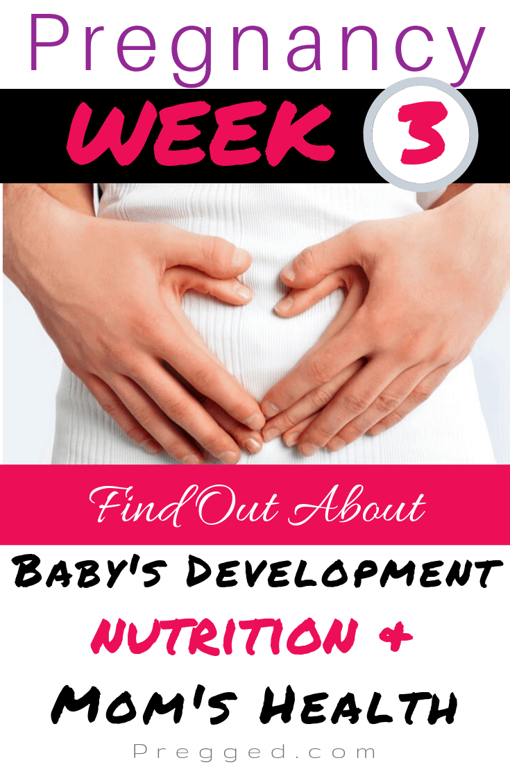 What's happening during your 3rd Week of Pregnancy? What's happening inside your uterus, inside the rest of your body and how might you feel? Also learn what you should be eating for a healthy pregnancy by Obstetrician Dr Kim Langdon #pregnancy #week3 #pregnancytips #pregnancy advice #weekbyweek
